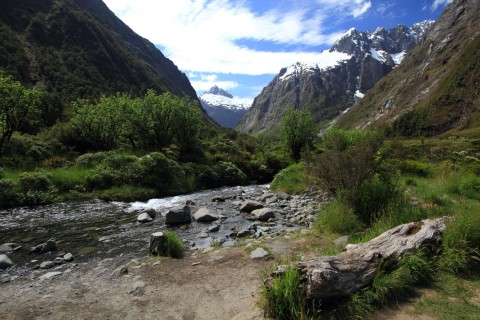 NZ river landscape